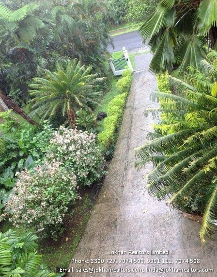 driveway-from-entrance-2